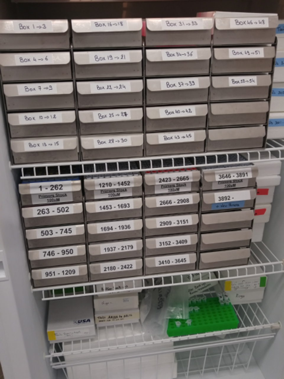 Use These Five Easy Steps to Organize any Lab Freezer