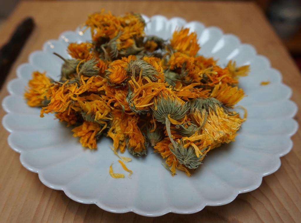 calendula flowers grown in Eugene, Oregon