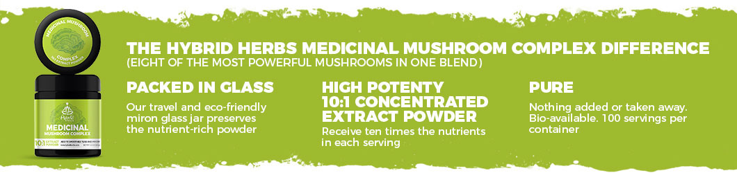 mushroom-complex-powder-difference.jpg