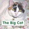 The Big Cat - Level B/1