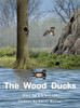 The Wood Ducks - Level J/18