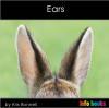 Ears - Level B/2