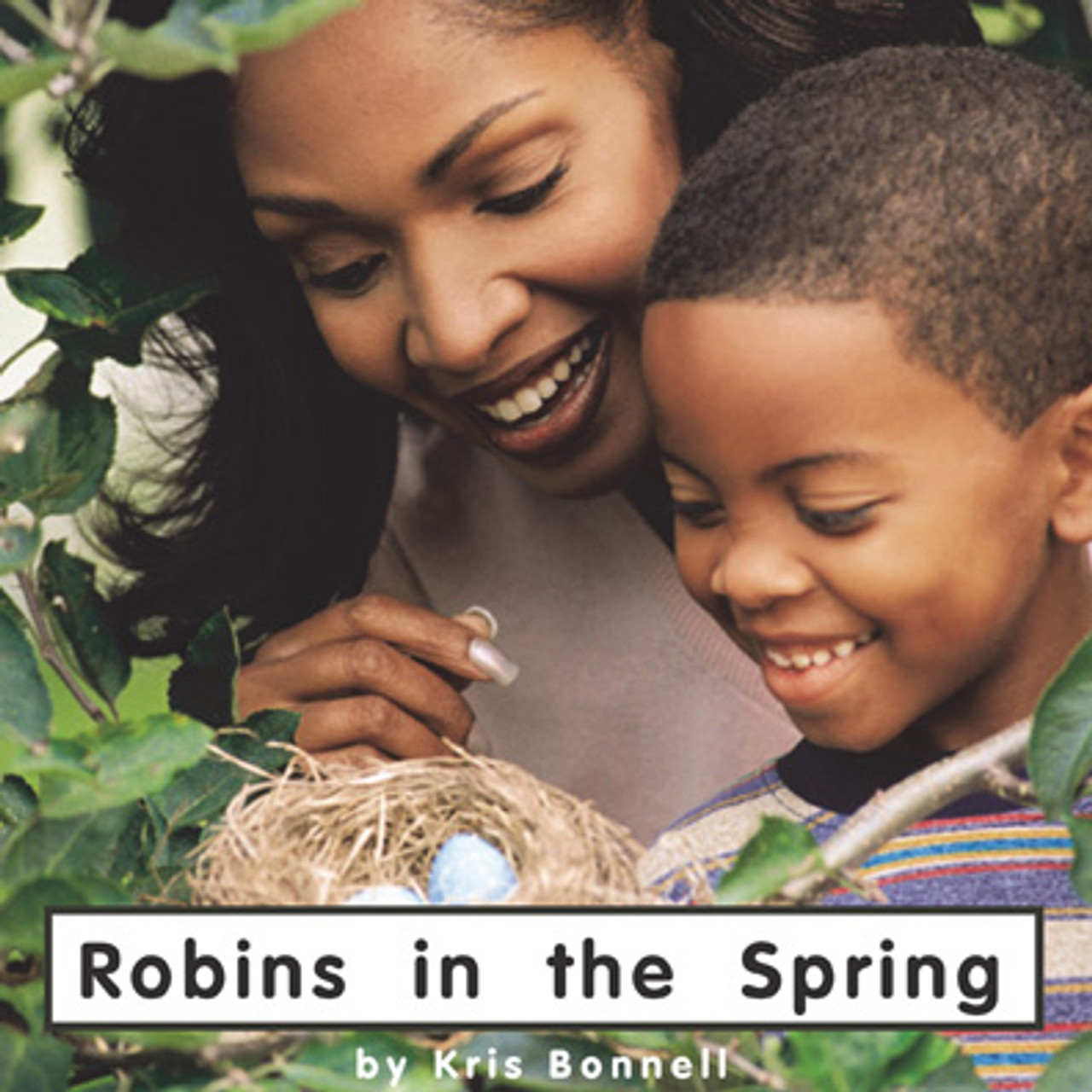 Robins in the Spring - Level D/4