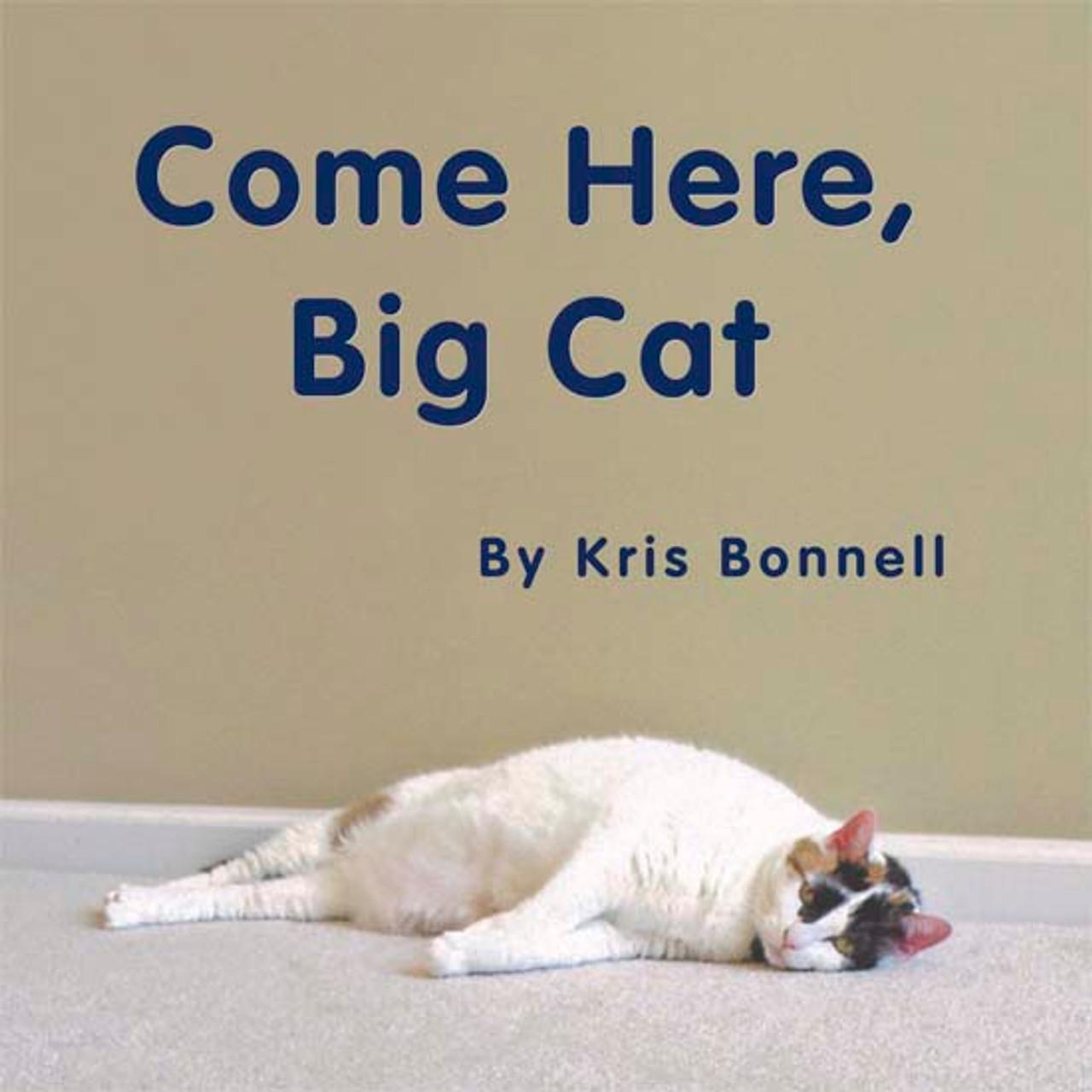 Come Here, Big Cat - Level D/4