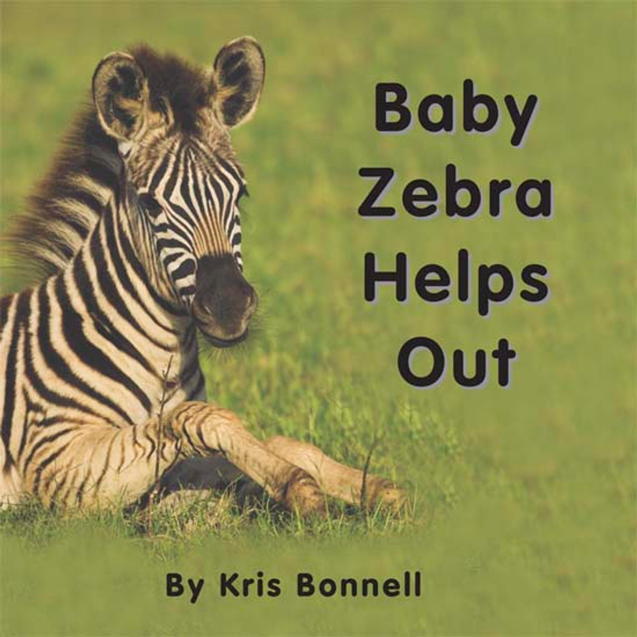 Baby Zebra Helps Out - Level D/4