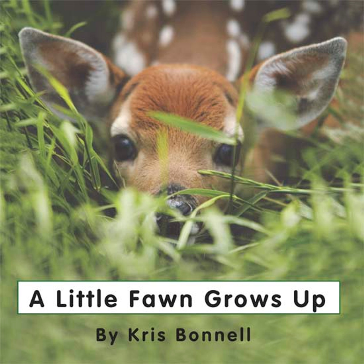 A Little Fawn Grows Up - Level D/6