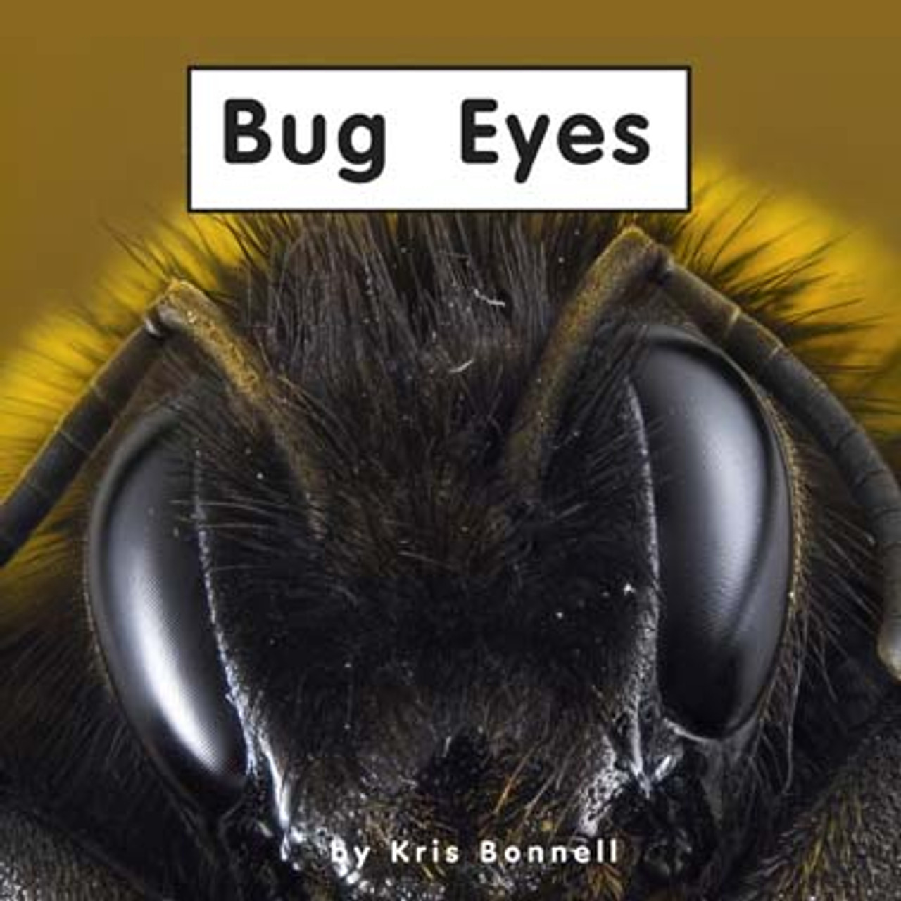 Bug Eyes - Level C/4