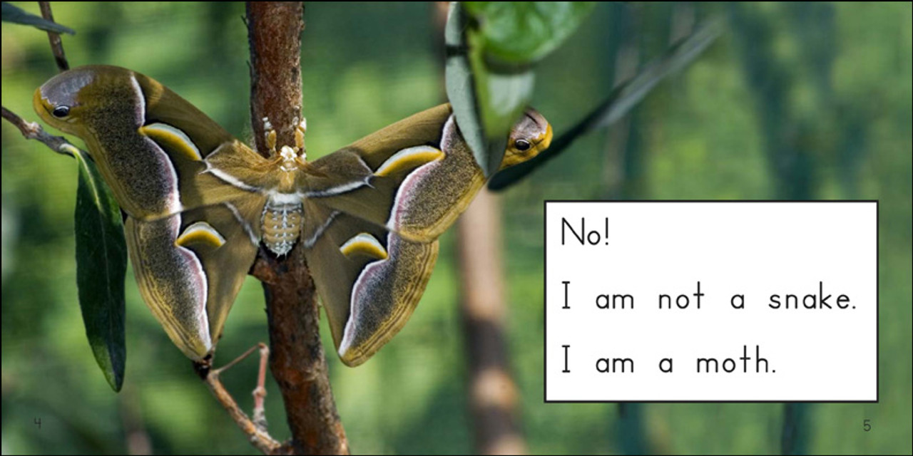 Am I a Snake? - Level C/3
