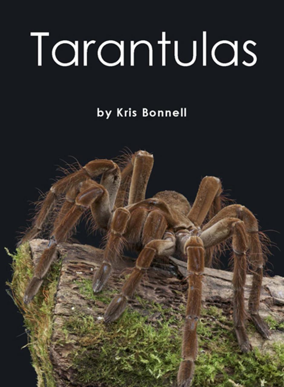 Tarantulas - Level K/18