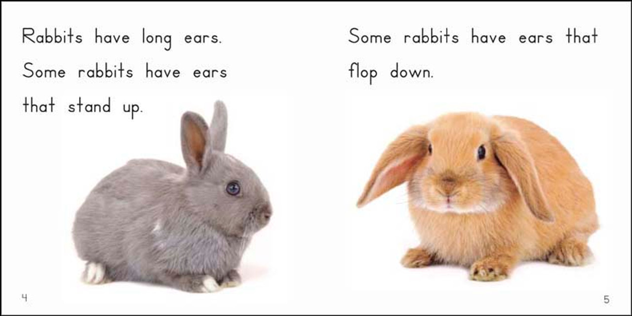 About Rabbits - Level E/7