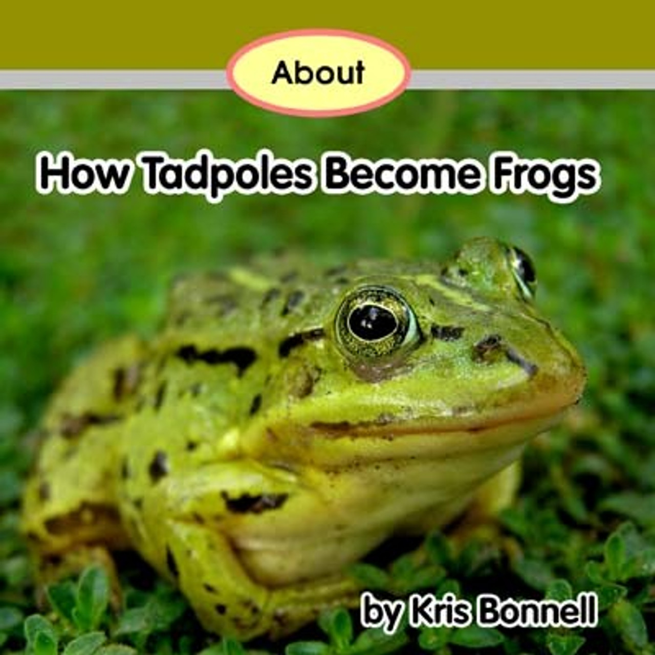 About How Tadpoles Become Frogs - Level D/7