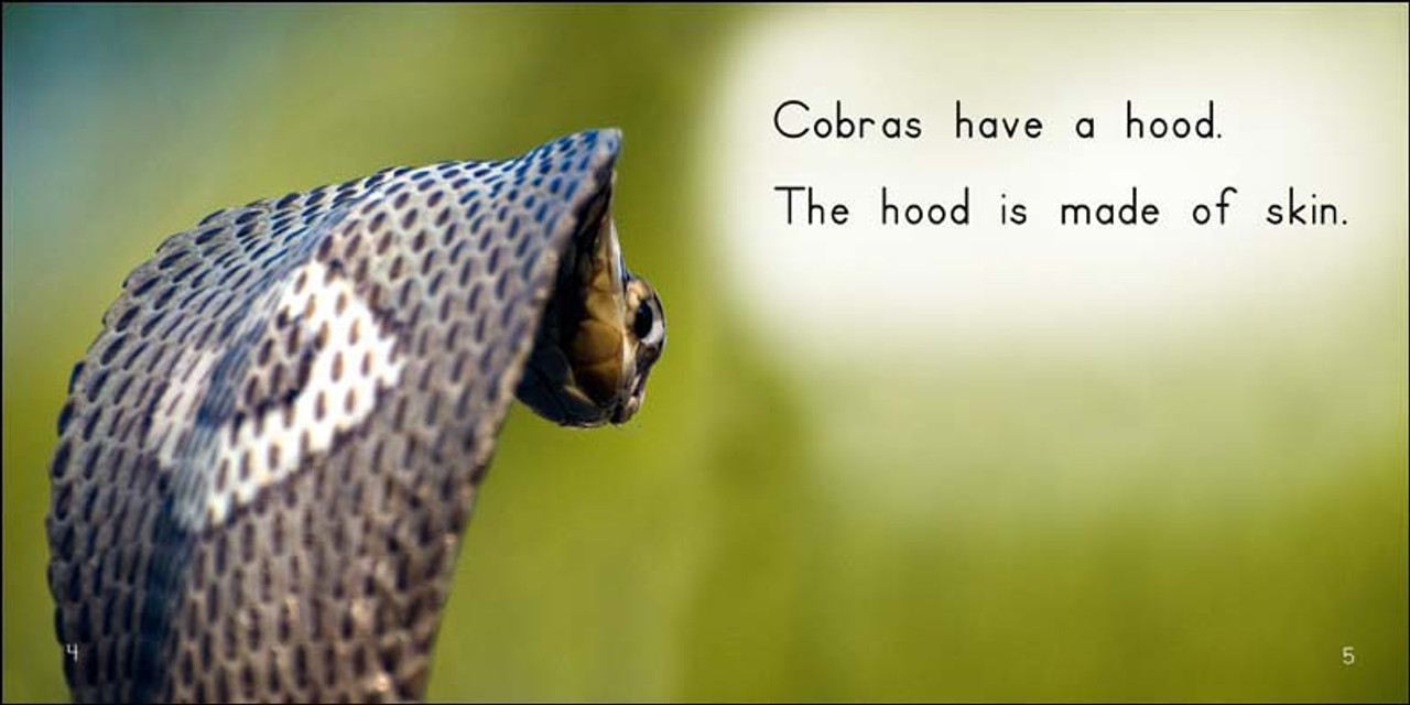 About Cobras - Level E/7