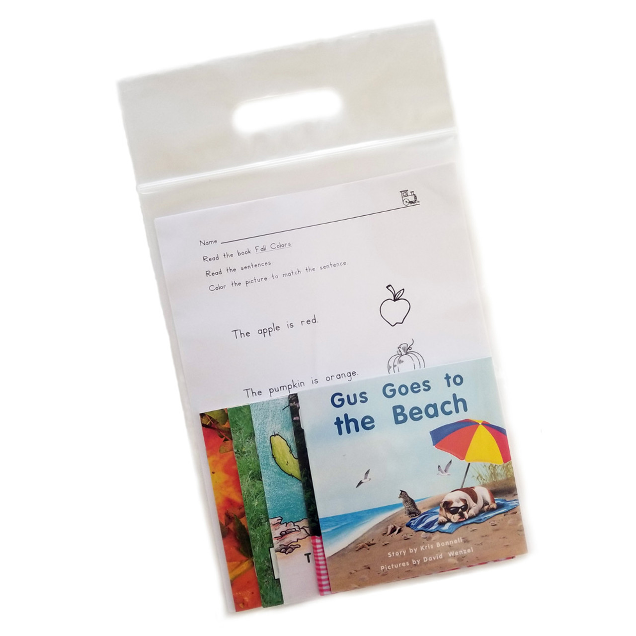 Home Reading Book Bags