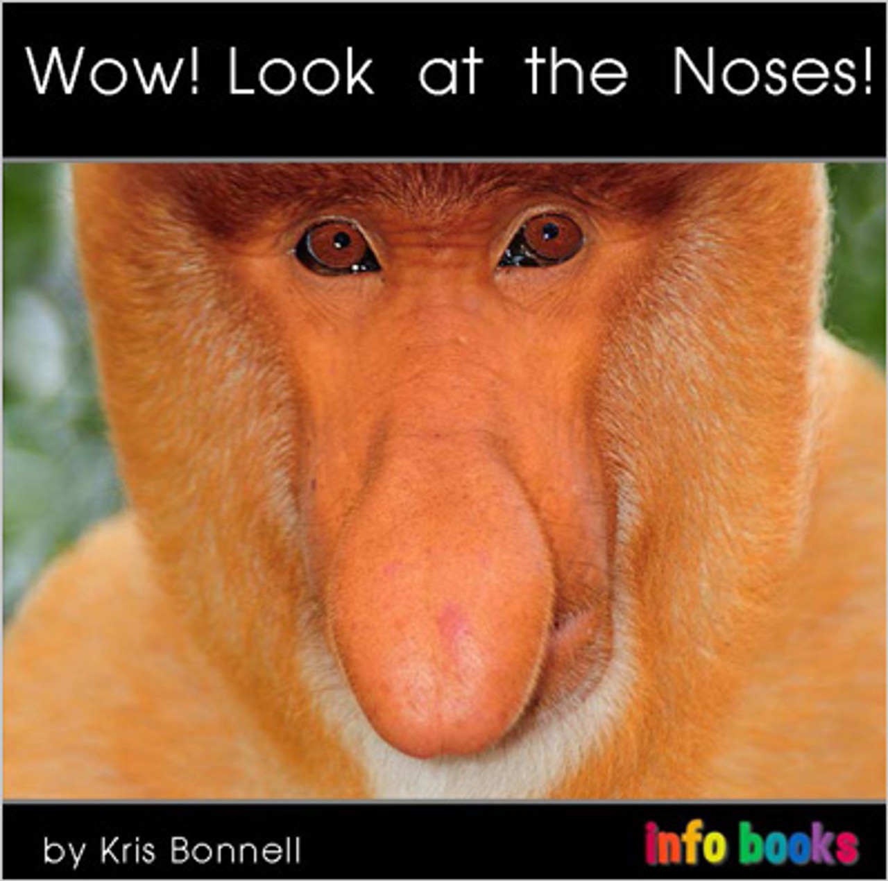 Wow! Look at the Noses! - Level B/2