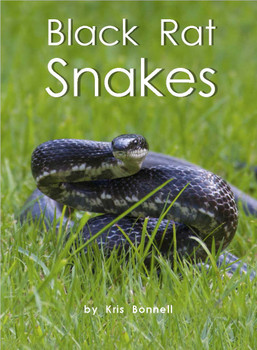 Black Rat Snakes - Level J/17