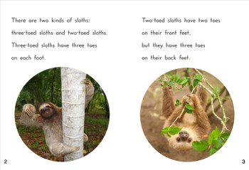 Sloths - Level G/12