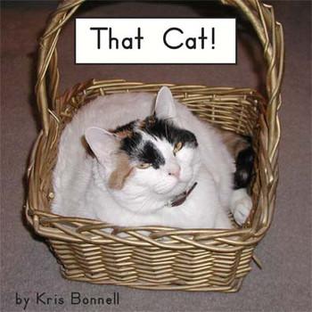 That Cat - Level D/4