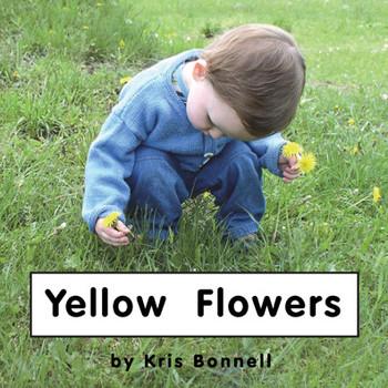 Yellow Flowers - Level C/4