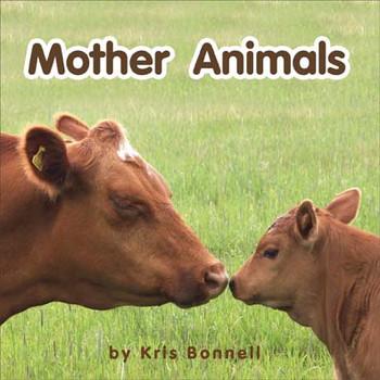 Mother Animals - Level B/2