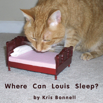 Where Can Louis Sleep - Level D/5