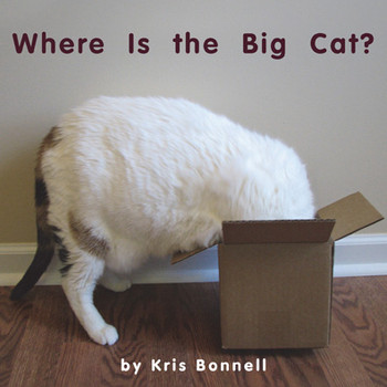 Where Is the Big Cat - Level E/6