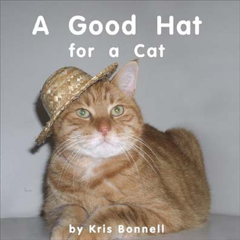 A Good Hat for a Cat - Level E/6