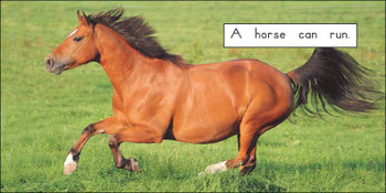 A Horse Can - Level A/1