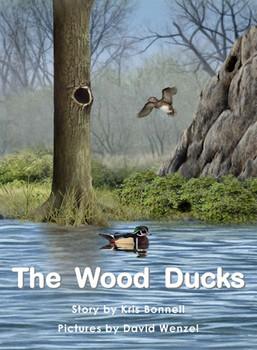 The Wood Ducks - Level J/18