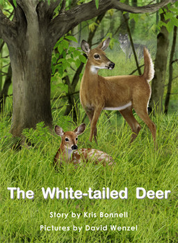 The White-Tailed Deer - Level H/13