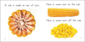 About Corn - Level E/8
