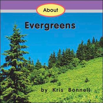 About Evergreens - Level E/8