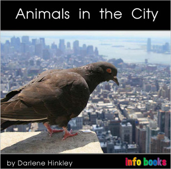 Animals in the City - Level A/1