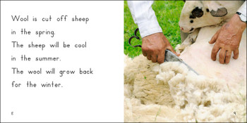 About Wool - Level F/8