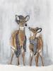 Deer Duo Picture