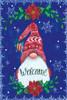 Snowflake Gnome Picture
