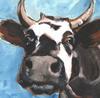Cow Breath Picture