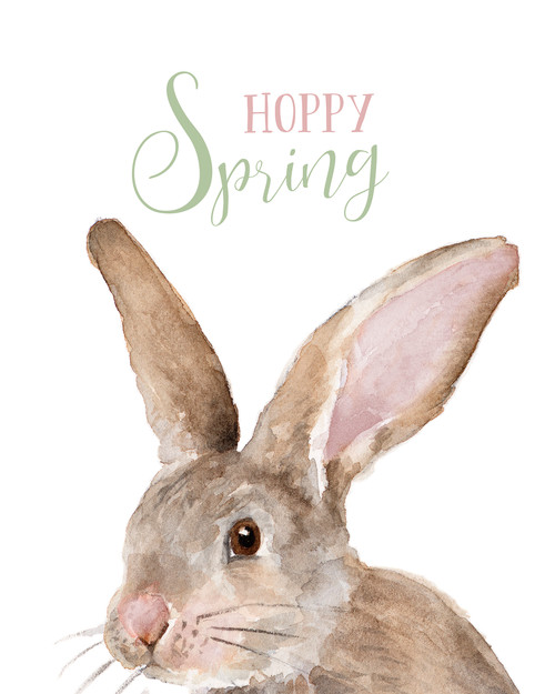 Hoppy Spring Picture