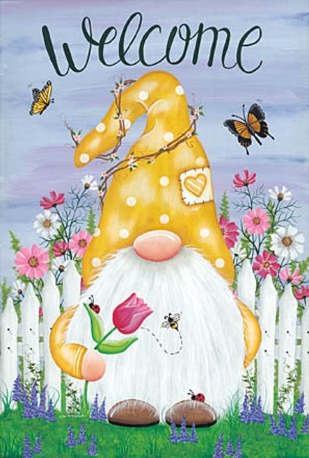 Garden Gnome Picture