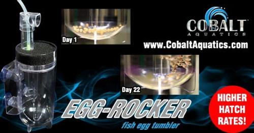 Cobalt Fish Egg Tumbler