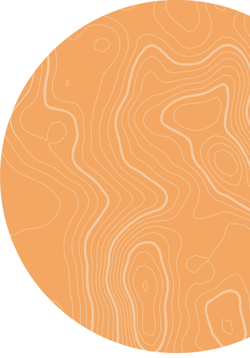 Orange Circle Graphic