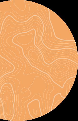 Orange Circle Graphic