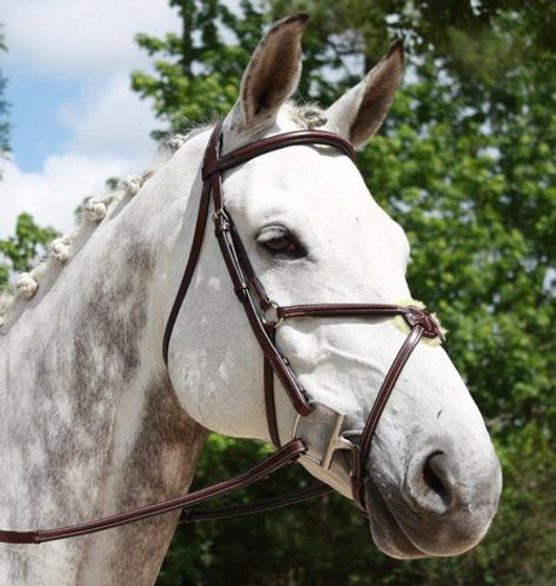 Red Barn Equinox Figure 8 Bridle with Rubber Reins