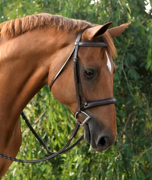 Red Barn Icon Bridle with Laced Reins