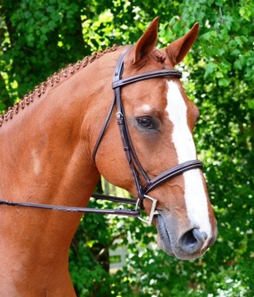Black Oak Aster Bridle with Laced Reins