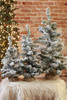 Snowy Pine Tree in Bag collection (size reference)