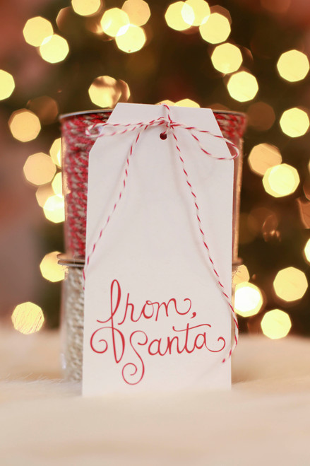 Paper Source From Santa Hanging Gift Tag (Pack of 10)