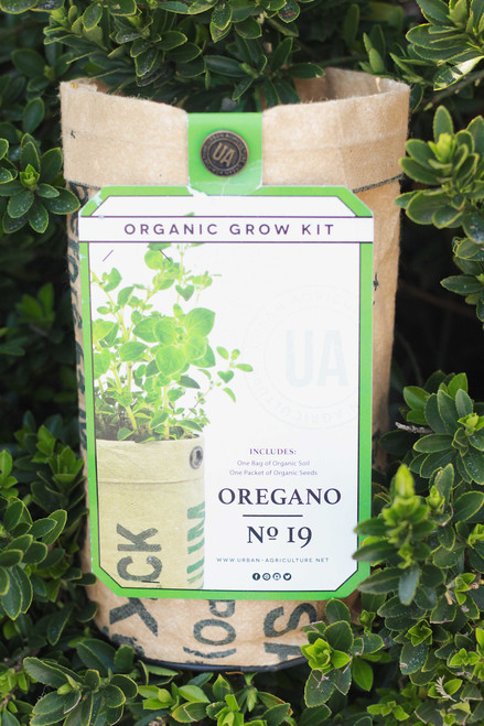 Oregano Potted Seed Grow Kit