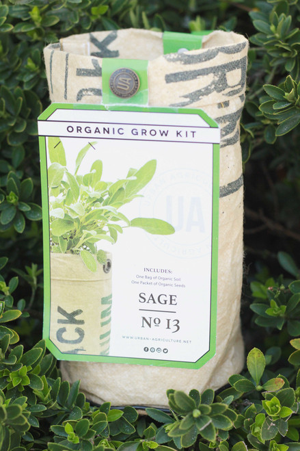 Sage Potted Seed Grow Kit