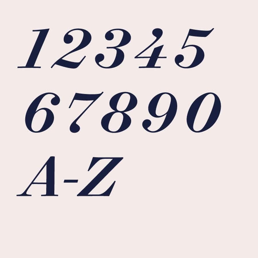 Surveyor Medium Italic