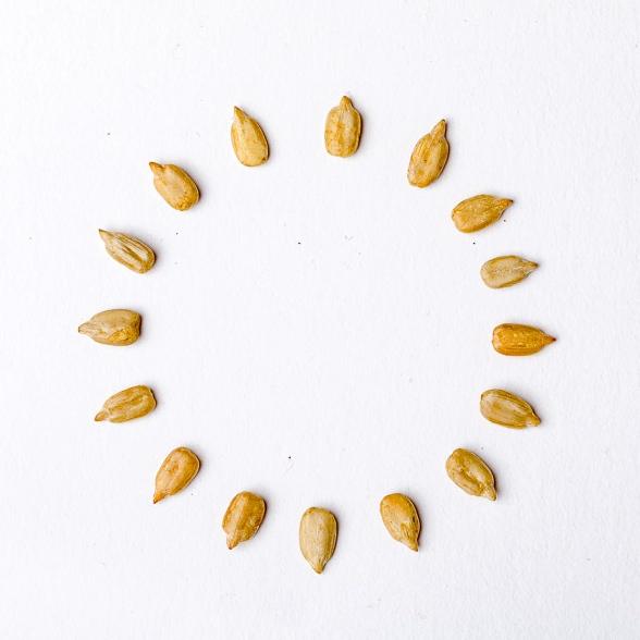 sunflower-seeds-circle.jpg